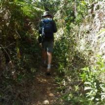 trilhas ecologicas 2